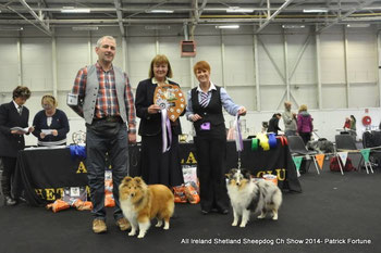Left: Best Puppy in Show : Degallo The Show Must Go on of Fernach- ( Mr D.McDonald) Right Reserve Best Puppy in Show  : 1. Caronlea Blue Belle at Fearnach- ( Mr D.McDonald)