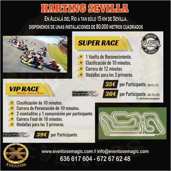 circuito de kart en Alcalá del rio