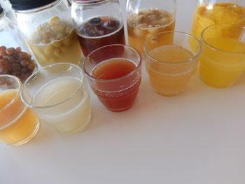 いろいろな果実酵母