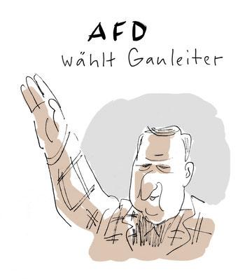 Cartoon von Mock zum AFD Parteitag