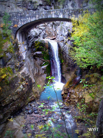 © Winifred. The beautiful Mount Rainier National Park, Washington. Our first National Park in USA. Nov 2008.