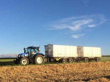 Getreide-Transport mit Agroliner-Kippern