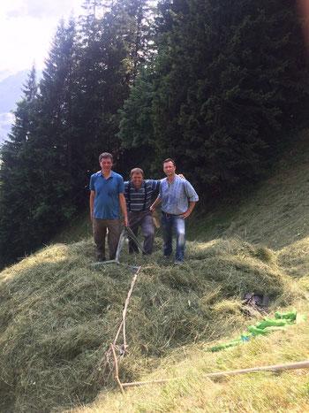 Bergheuen am Stanserhorn: mit Klaus Reinhard und Beat Gut. Juli 2015