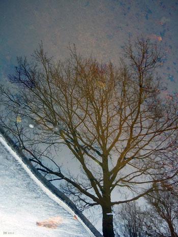 Schneeschmelze (Fotografie)