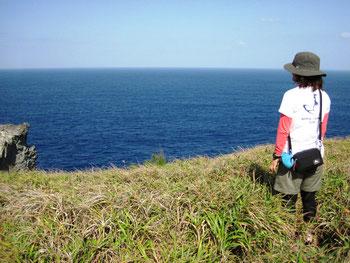 鍋弦山指定ルート終点、ここでもクジラに会えました