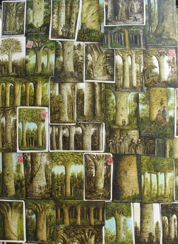'Kauri collection' 2014,610 x710mm, oil on canvas. SOLD