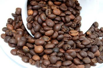 kaffee, pascucci, arabica