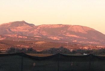 Ankunft in Huetor Tarjar am Abend mit Blick über die Olivenhaine