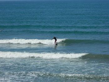 ありがたや~。今日も波があります♪