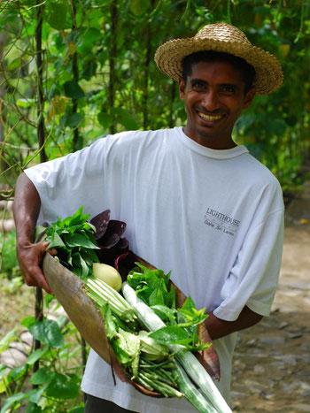 Personeel van hotel in Kurulubedda in Sri Lanka die groente toont