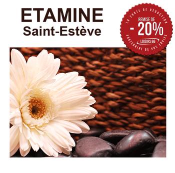 Etamine St Estève Réductions loisirs 66