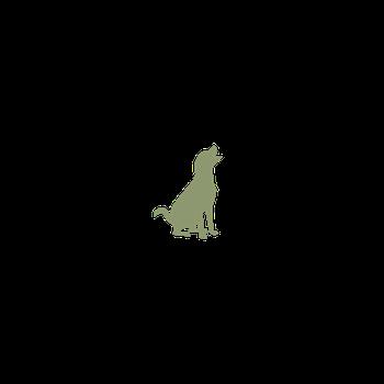 動物関連エキスパート専門のエージェント ギフトタンク アニマルコミュニケーション animalcommunication アニマルコミュニケーター animalcommunicator ラッキートレイン Blackietrain 動物通訳士 アニマルインタープリター animalinterpreter 探偵犬 ドッグトレーナー SAVIC AICS 東京都世田谷区深沢