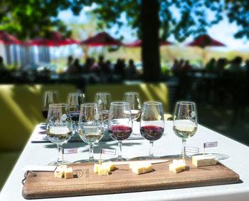 Wijnsoorten wijnproeverij
