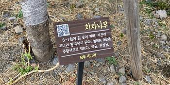 Plant info plaques