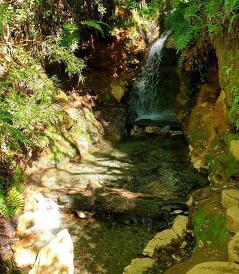 Die Quellen von Queñi