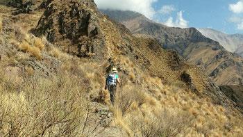 Blick auf die Sierra de Famatina