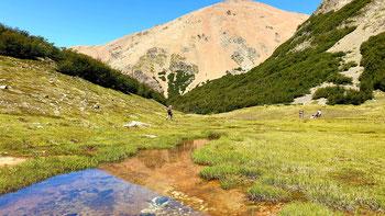 Cerro Cocinero im Nationalpark los Alerces