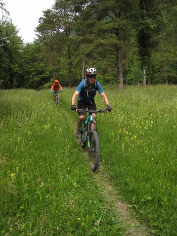 Der Regitzer Spitz bietet schöne Trails und super Aussichten.