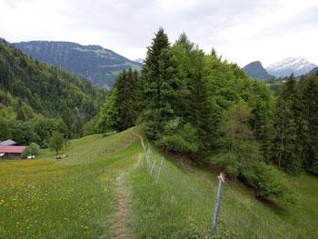 Landschaft super, Trails flowig bis anspruchsvoll!