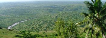 Shimba Hills