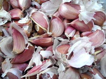 Garlic Knoblauchzehen