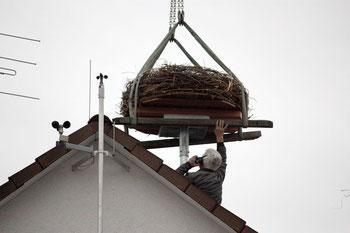 Herr Meyer befestigt das Nest auf dem Dach