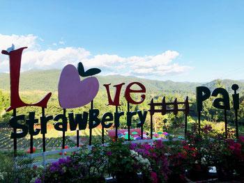 love-strawberry-pai