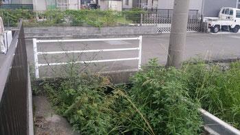 学習塾の隣にある危険な水路