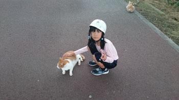 猫から離れようとしない娘
