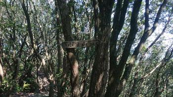 小笠山山頂。眺望はありませんが、すぐ近くに展望台があります