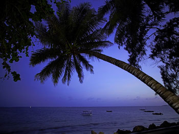 Indian Ocean at night, Severin Sea Lodge, Mombasa, kenya. Dante Harker.