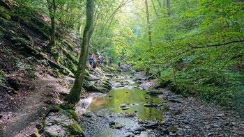 Hunsrücker Canyontrail Baybachklamm Ehrbachklamm Trailrunning SaarHunsrückSteig Traumschleifen Saar-Hunsrück