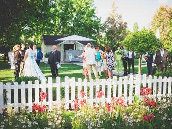Hochzeitsfotograf Paar Foto Shooting Wien Donaustadt
