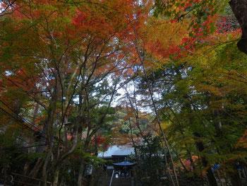 神峯山寺 本堂(写真提供:神峯山寺)