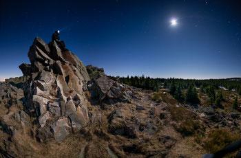 Wolfswarte im Mondlicht
