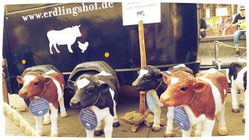 Ein Spendenlauf für die Tiere im Bauernhof
