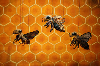 Bee Support 2014 Premiere Bienen in Gefahr!