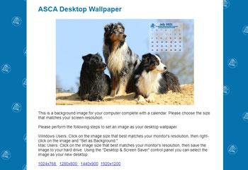 Auswahl zum ASCA Desktop Wallpaper Juli 2021