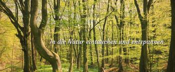 Foto ©WohlfühlWege