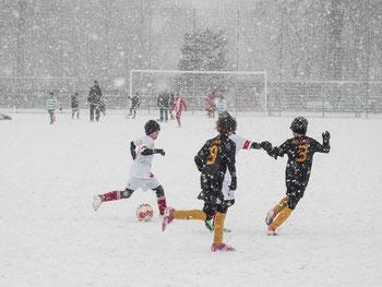 Schneetreiben am Fibelweg. - Fotos: heiko.schnorr.