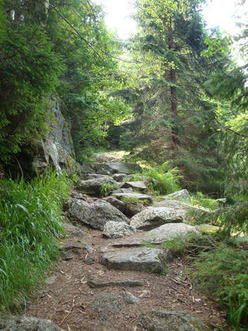 Auf dem Bild ist ein Weg voller Felssteine zu sehen...
