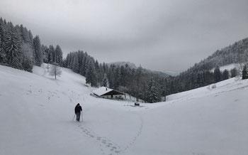Von der Herrenalm durch unberührten Schnee bergauf