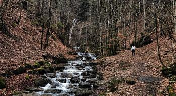 Rottauer Wasserfall