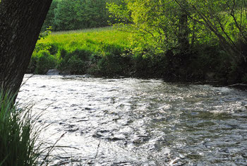 The Weisser Regen in Bavaria, Germany. Flyfishing, angeln, danica dudes, fliegenfischen