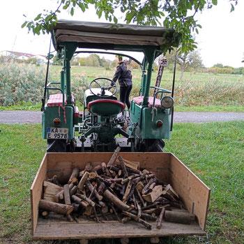 Fit werden ohne Sport - Holz machen