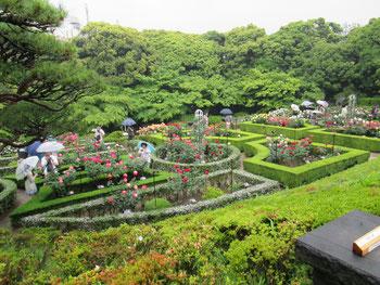 見事に整った庭園に大輪の薔薇が咲き誇っていました