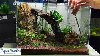 Aqua-Tropica Aquarium