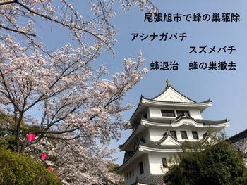 尾張旭市の旭城と桜