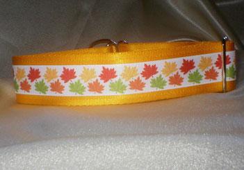 Zugstopp, Halsband, 4 cm, Gurtband sonnengelb, Borte mit buntem Laub