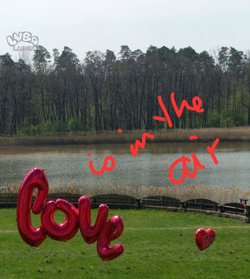 Heiratsantrag mit Folienballosn Love XXL mit Ballongas
